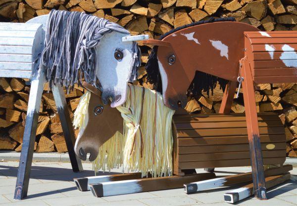 Dein individuelles Pferd nach Deinen Wünschen